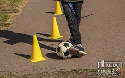 В криворожском лицее планируют отремонтировать футбольное поле
