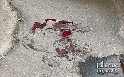 В Кривом Роге легковушка сбила девушку