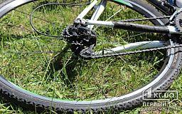 Мужчина, который под Кривым Рогом украл велосипед, проведет в тюрьме больше 3 лет