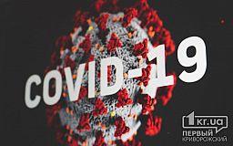 За 24 часа в Украине зафиксировали 528 новых случаев коронавируса