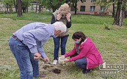 Криворожские геологи взяли пробы почвы, чтобы проверить на наличие тяжелых металлов
