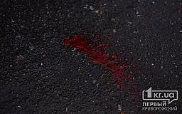Полиция разыскивает свидетелей смертельного ДТП, которое случилось недалеко от Кривого Рога