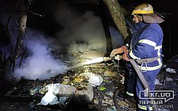 Под Кривым Рогом в результате пожара в лесополосе погибла женщина и пострадал мужчина