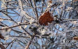 Погода на месяц в Кривом Роге: синоптики определились с прогнозами