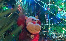 Что криворожанам делать с елкой после новогодних и рождественских праздников