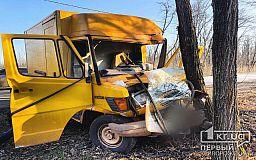 В Кривом Роге грузовой микроавтобус выехал на встречную и врезался в дерево
