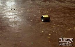 Криворожанин несколько раз выстрелил в полицейского, нарушителя задержали