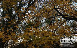 Какой будет погода 10 ноября в Кривом Роге