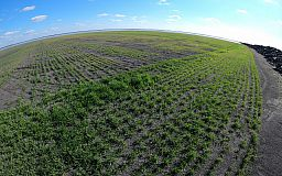 На Ингулецком ГОКе озеленяют отвалы с помощью гидромониторов