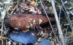 В Широковском районе грибник обнаружил взрывоопасный предмет