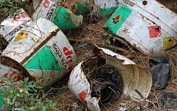 Сельчане Криворожского района устроили аж 38 стихийных свалок