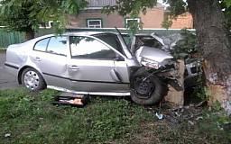 В Кривом Роге угонщики, завладев чужим автомобилем, разбились об дерево