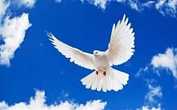 Мы за мир, - педагогический состав криворожской школы № 116