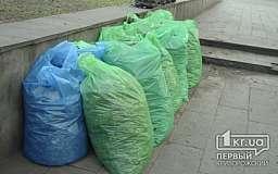 Молодежь Кривого Рога занялась уборкой парков