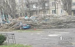 В Кривом Роге сильный ветер срывает обшивку с домов и валит деревья