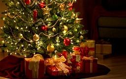 Как правильно выбрать новогоднюю елку? (ИНФОГРАФИКА)