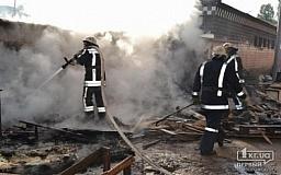 С начала года на пожарах Днепропетровщины погибли 168 человек
