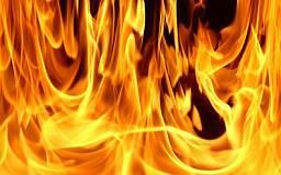 Под Кривым Рогом горел грузовой автомобиль