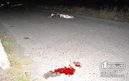 В Кривом Роге неизвестный на авто сбил двух молодых людей. Один парень скончался на месте, второй - в больнице (18+) (ОБНОВЛЕНО)