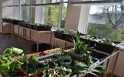 Юным натуралистам Центральный ГОК подарил лабораторию и тепличный комплекс