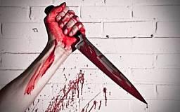 В Кривом Роге мужчина на почве ревности убил сожительницу и ранил знакомого