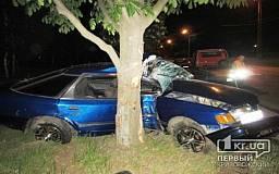В Кривом Роге водитель на «Ford» влетел в дерево и сбежал с места ДТП