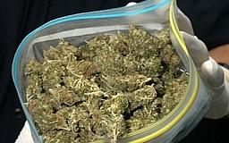 В Кривом Роге на вокзале задержали мужчину с пакетом «марихуаны»