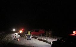 ДТП в Кривом Роге: Mercedes Vito влетел в дерево