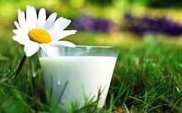 С февраля 2015 года молочную продукцию Украины начнут поставлять в Европу