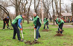 «Зеленый центр Метинвест» изменил условия конкурса «Сто дворов»