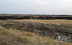 Возле Кривого Рога фермеры потушили пылающее поле с пшеницей