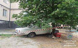 Под деревом возле криворожской многоэтажки нашли артиллерийскую мину