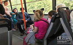 Как льготники будут платить за проезд в общественном транспорте Кривого Рога