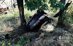 Под Кривым Рогом авто вылетело в кювет, погиб пассажир