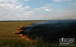 Горящее поле с пшеницей под Кривым Рогом спасатели потушили за 50 минут