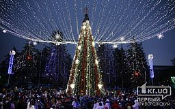 Несколько сотен криворожан пришли на открытие новогодней елки в Ингулецком районе города