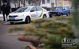 Криворожские полицейские провели рейды по точкам продажи новогодней хвои