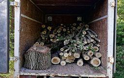 Полный кузов древесины без документов обнаружили в Кривом Роге