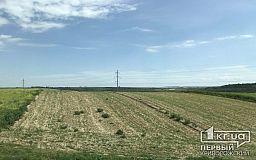 25% территории Украины охвачены засухой, - заявление