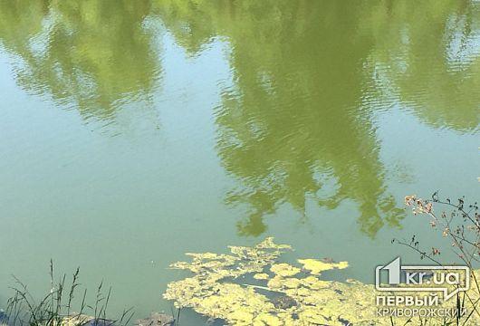 В Кривом Роге мужчина прыгнул в реку и утонул
