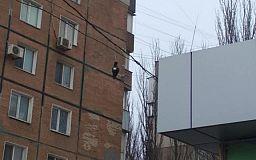 В центрі Кривого Рогу вже більше місяця висить птах на дротах