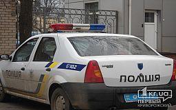 Полицейские Кривого Рога задержали воров «на горячем»
