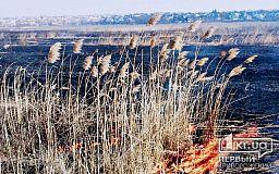 В Кривом Роге участились поджоги в природных экосистемах
