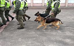 На улицах Кривого Рога появится больше полицейских и Нацгвардейцев с собаками