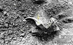 Криворожанин обнаружил артиллерийский снаряд на земельном участке