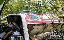 На трассе возле Кривого Рога грузовик слетел в кювет, пострадали люди