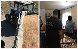Чиновника, который брал взятки зерном, разоблачили криворожские правоохранители