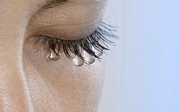 Смех сквозь слезы: украинцы на заработках