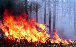 На Дніпропетровщині очікується надзвичайна пожежна небезпека