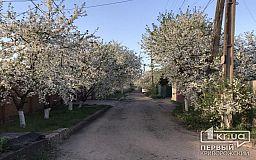 Погода в Кривом Роге на 24 апреля